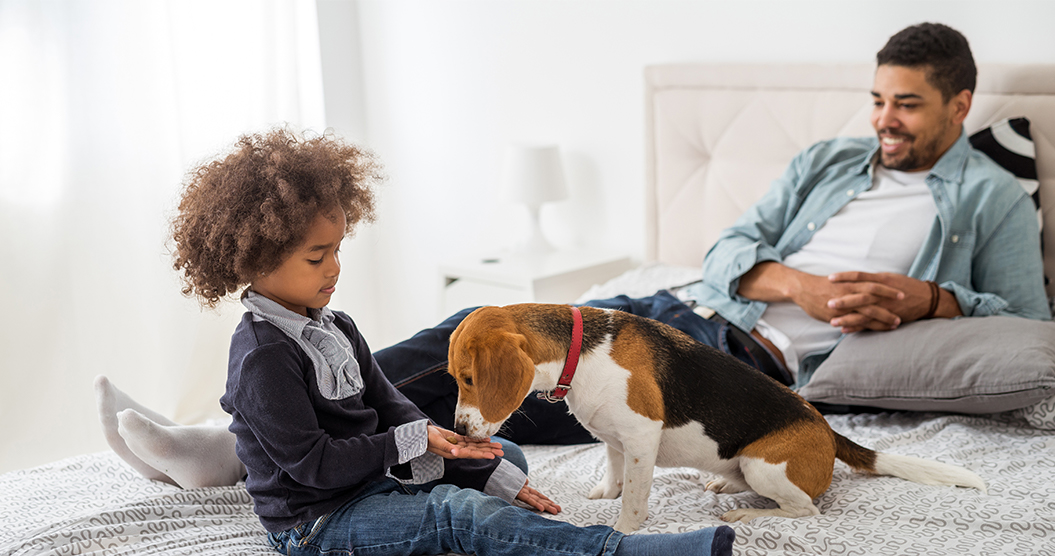 Want to adopt a furry friend? Learn the typical cost of owning a dog, cat, or other pet and get tips for saving money on pet ownership.